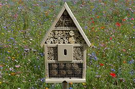 Ein Insektenhotel für den Schulgarten kann mit dieser Bauanleitung entstehen.
