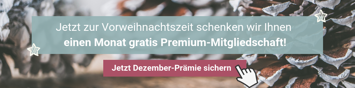 Dezember Prämie Lehrer-Online