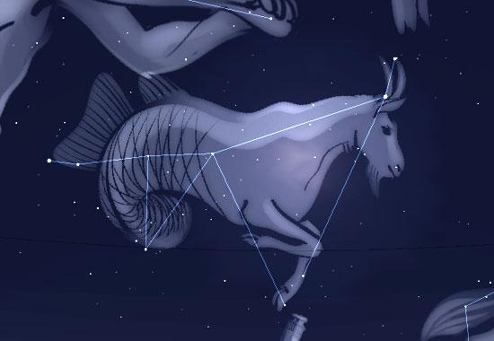Sternbildfigur des Steinbocks als Ziegenfisch; erstellt mit Stellarium