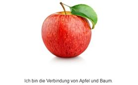 interaktive Übungen zum Apfel