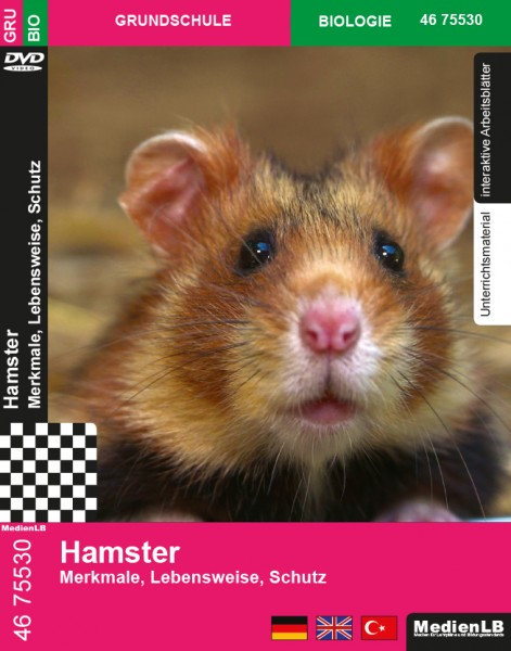 Hamster - Merkmale, Lebensweise, Schutz
