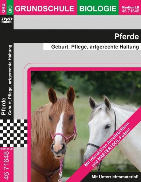 Pferde - Geburt, Pflege, artgerechte Haltung