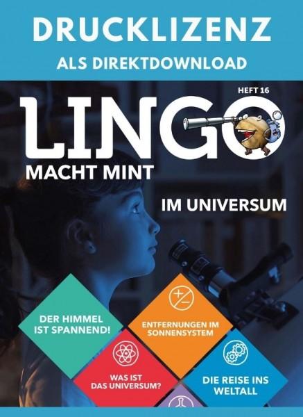 Lingo macht MINT Drucklizenz 16 Im Universum