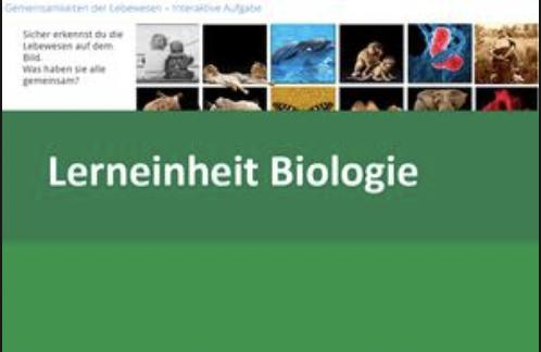 Interaktive Lerneinheit Biologie 8 – Den Code des Lebens entschlüsseln