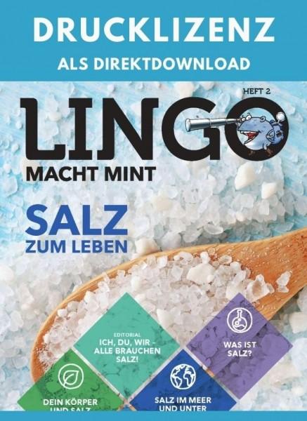 Lingo macht MINT Drucklizenz 2 Salz