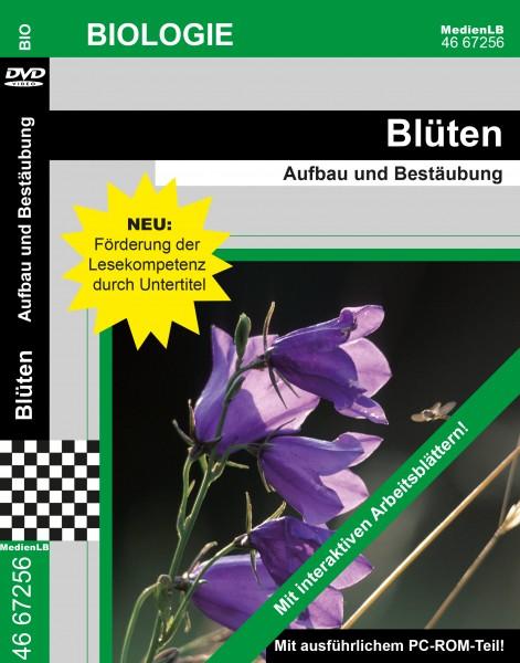 Blüten - Aufbau und Bestäubung