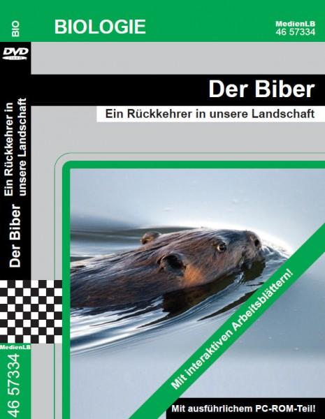 Der Biber - Ein Rückkehrer in unsere Landschaft