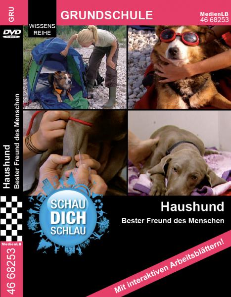 Haushund - Bester Freund des Menschen