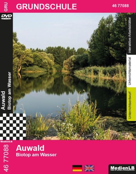 Auwald - Biotop am Wasser