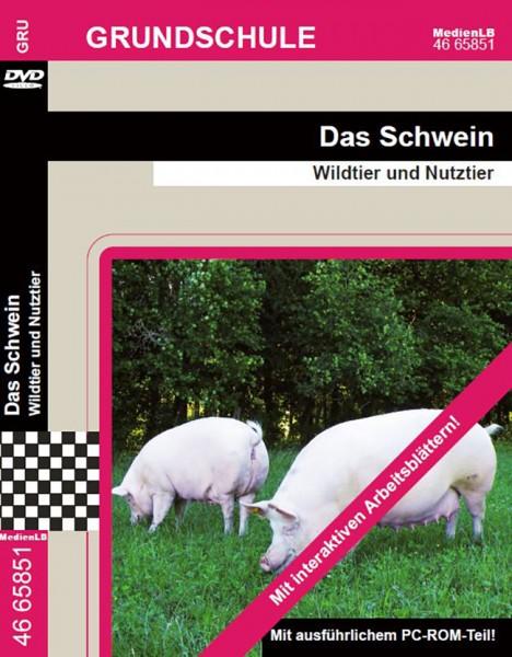 Das Schwein - Wildtier und Nutztier