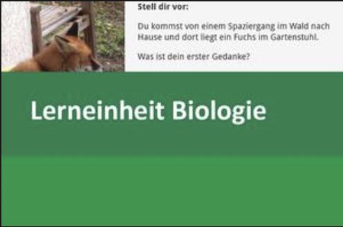 Interaktive Lerneinheit Biologie 10 – Das Gedächtnis