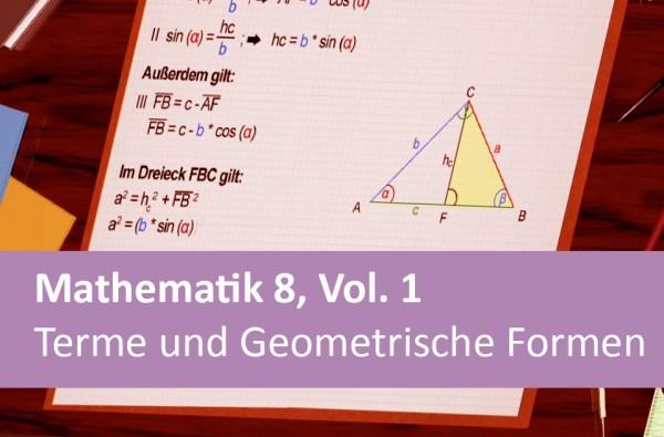 Interaktives Arbeitsheft Mathematik Terme und Geometrische Formen 8.