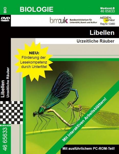 Libellen - Urzeitliche Räuber
