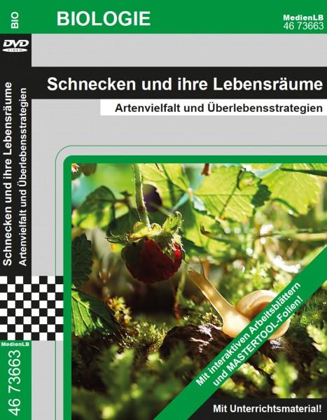 Schnecken und ihre Lebensräume - Artenvielfalt und Überlebensstrategien