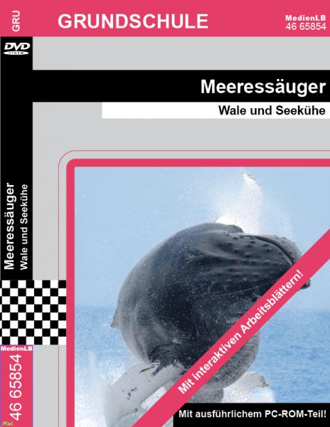 Meeressäuger - Wale und Seekühe
