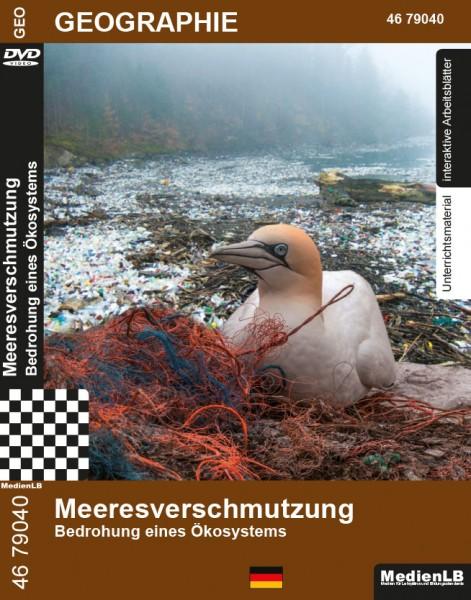 Meeresverschmutzung - Bedrohung eines Ökosystems