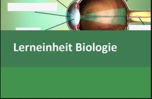 Interaktive Lerneinheit Biologie 5 – Aufbau und Funktion des Auges