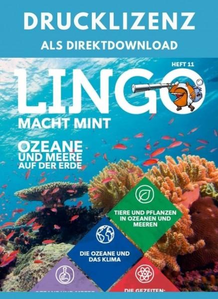 Lingo macht MINT Drucklizenz 11 Ozeane