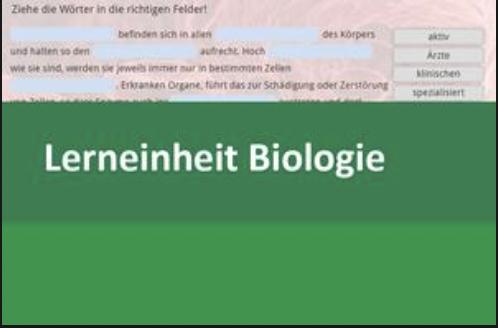 Interaktive Lerneinheit Biologie 8 – Enzyme: Definition und Funktion