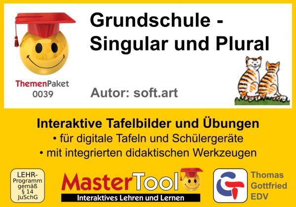 MasterTool - Grundschule - Singular und Plural (TP 39)