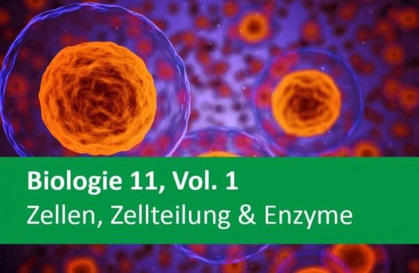 Interaktives Arbeitsheft Biologie, Zellen, Zellteilung & Enzyme 11.