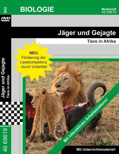 Jäger und Gejagte - Tiere in Afrika