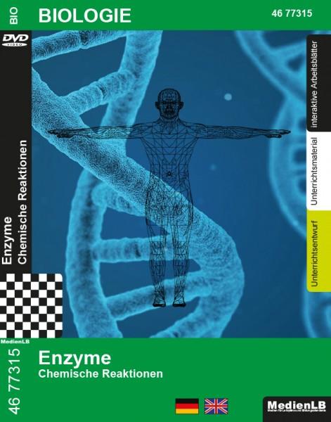 Enzyme - Chemische Reaktionen