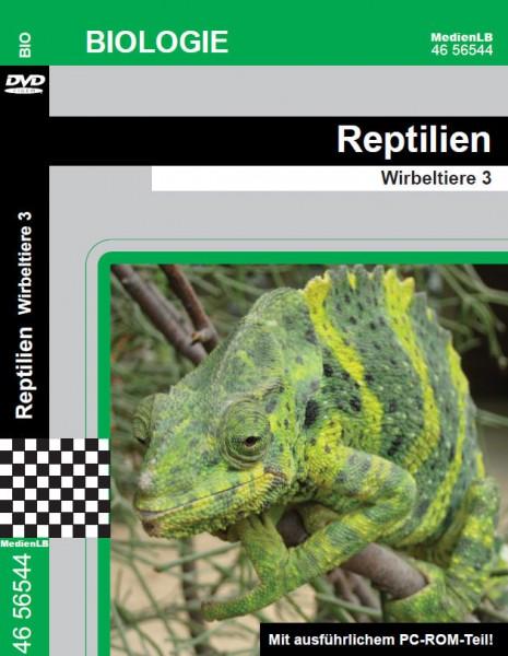 Reptilien - Wirbeltiere 3
