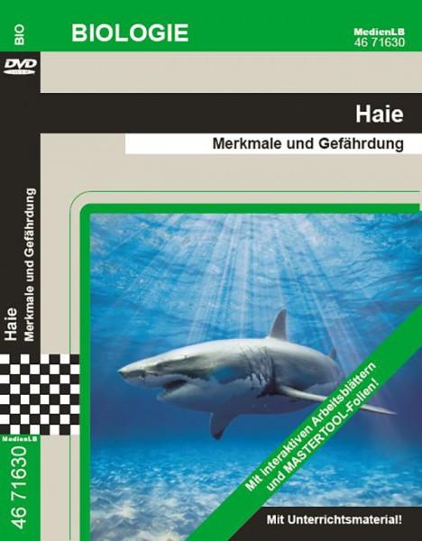 Haie - Merkmale und Gefährdung