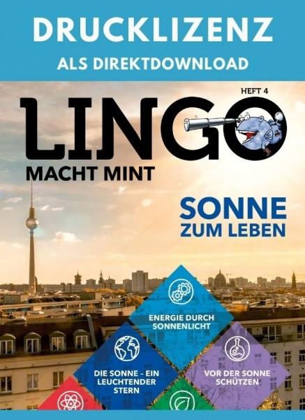 Lingo macht MINT Drucklizenz 4 Sonne