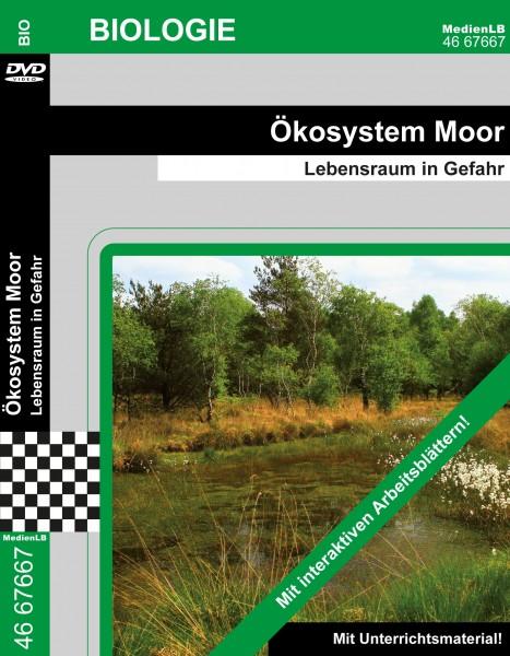 Ökosystem Moor - Lebensraum in Gefahr