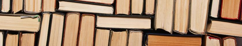 Lektüren und Fachbücher im Lehrer-Online-Shop